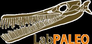 Laboratório de Paleontologia
